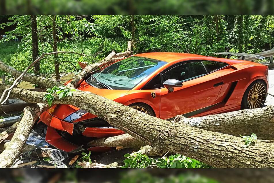 Der Lamborghini-Fahrer wurde von umkippenden Bäumen überrascht.