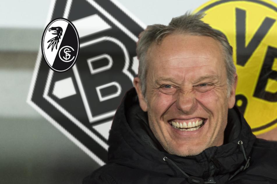 Trainer-Kandidat beim BVB und in Gladbach? So herrlich Streich-Like wiegelt dieser ab