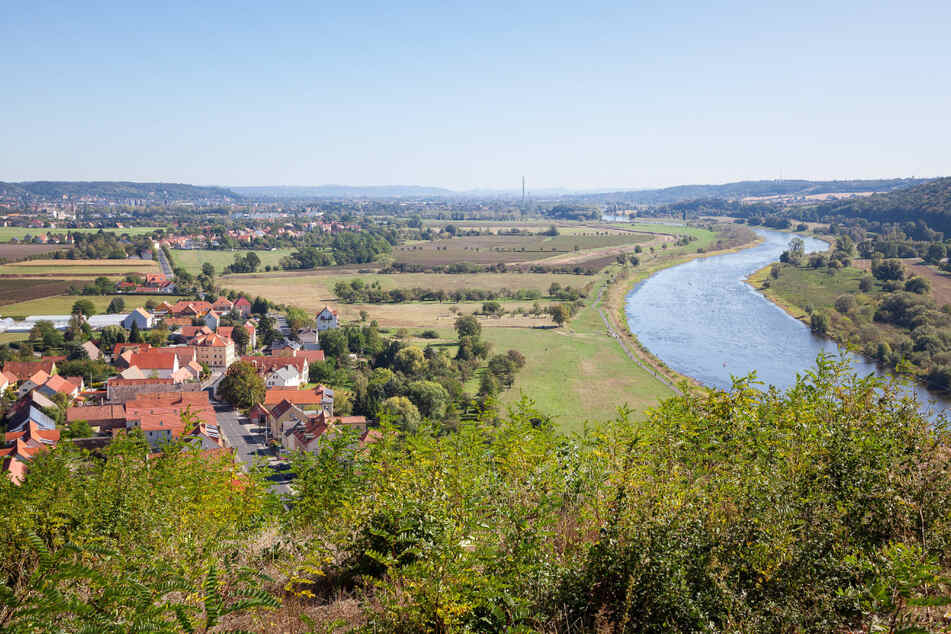 Die Aussicht von der Boselspitze auf Sörnewitz, Coswig und die Elbe.