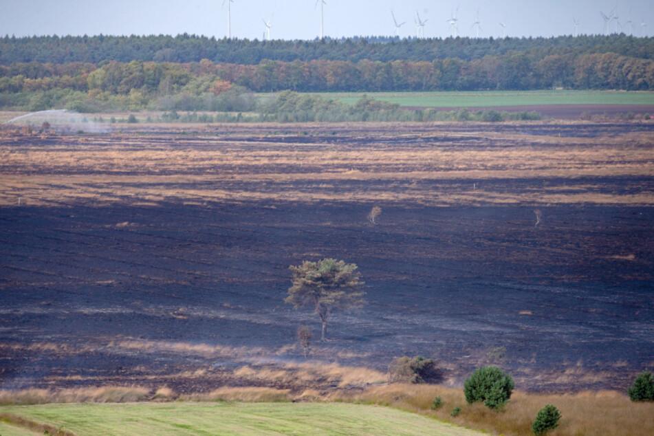 Bundeswehr will nach Brand-Katastrophe wieder Waffen im Moor testen