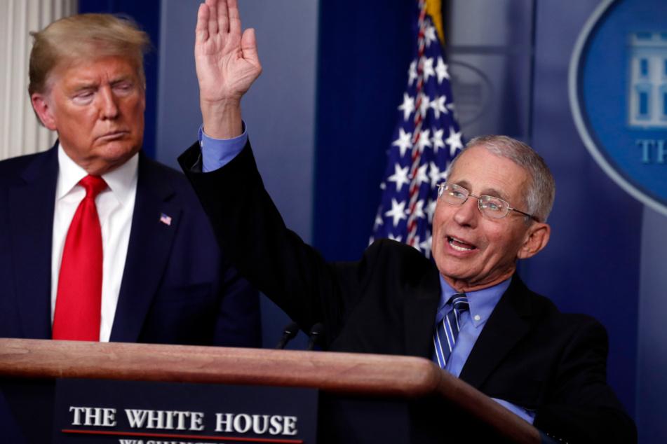 Donald Trump steht neben Anthony Fauci, der während einer Pressekonferenz im Weißen Haus über die Verbreitung des Coronavirus spricht.