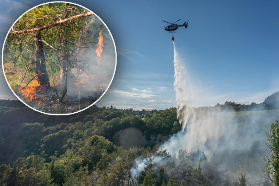 Waldbrand in Thüringen: Löschhubschrauber im Einsatz