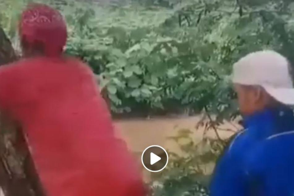 Die Jungs amüsierten sich, wie das grausame Video auf Facebook zeigt.