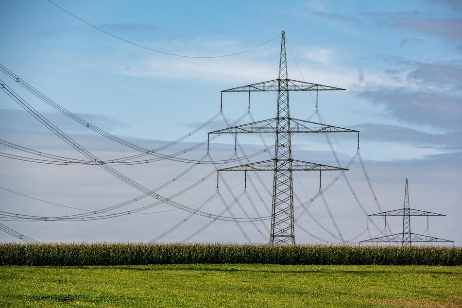 Eine neue Hochspannungsleitung sollte das Umspannwerk Falkenstein an die Leitung Herlasgrün - Markneukirchen anbinden. (Symbolbild)