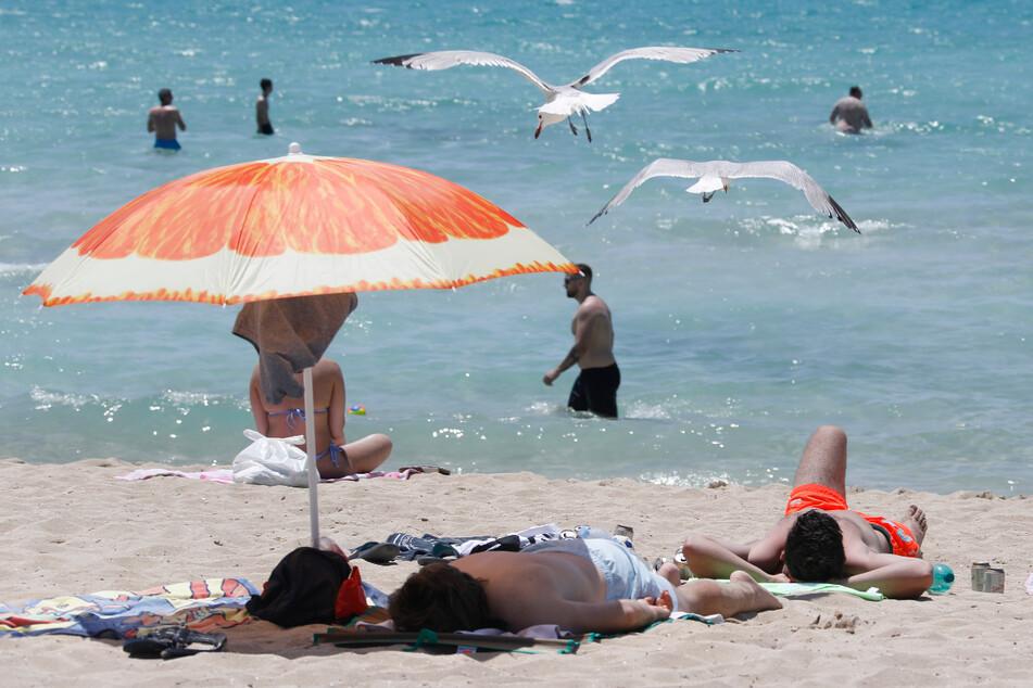 Palma de Mallorca: Touristen genießen die Sonne am Strand von Arenal.