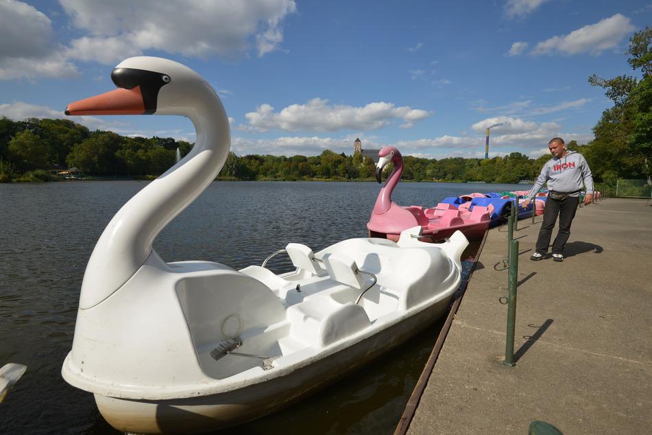 Auf dem Schlossteich könnt ihr mit Tret- oder Ruderbooten in See stechen.