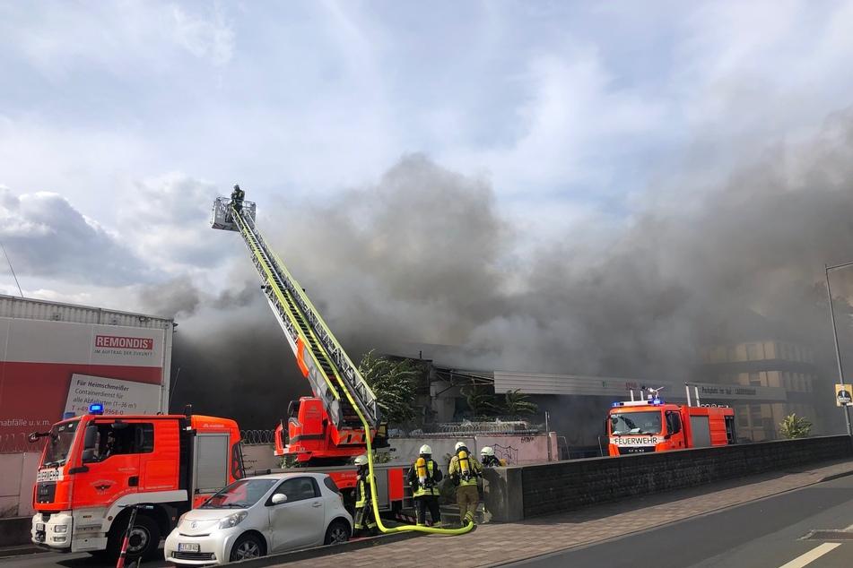 Feuer bei Remondis in Köln: KVB-Verkehr betroffen