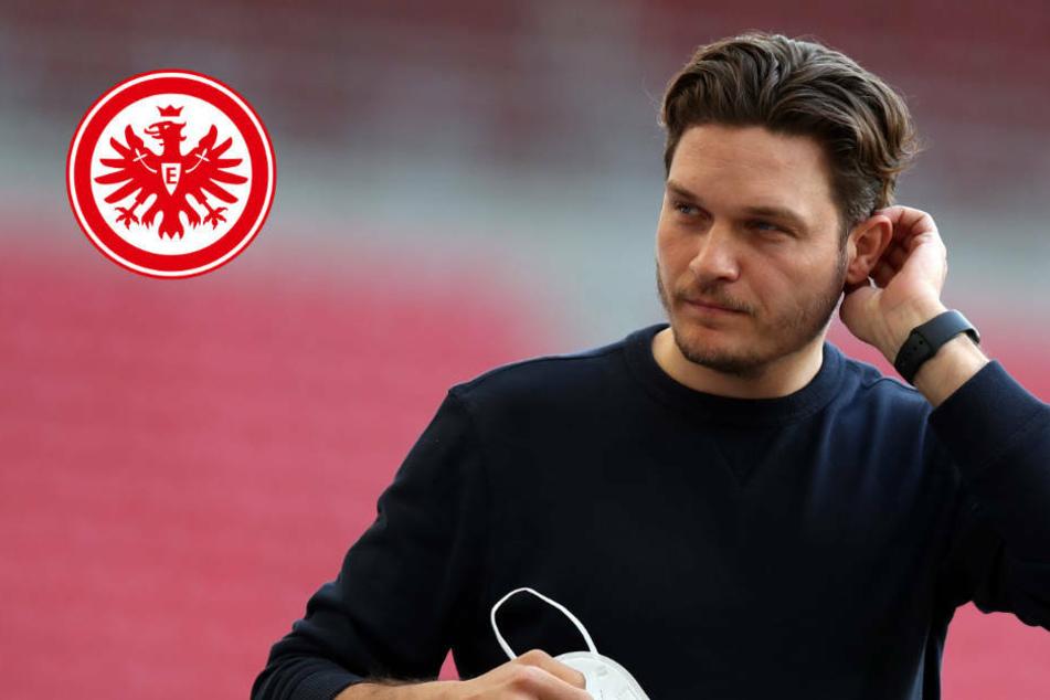 Eintracht Frankfurt an Edin Terzic dran? Das wäre die perfekte Lösung!