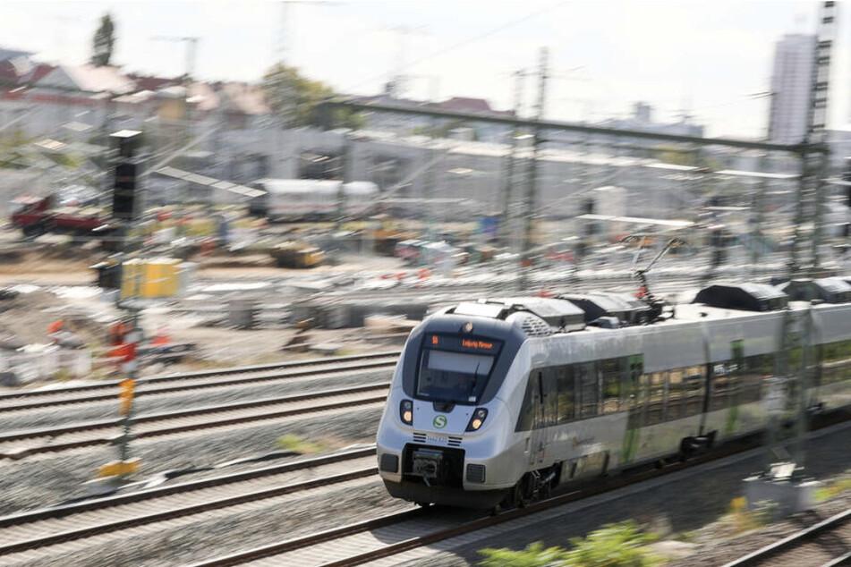 Die 60-Jährige wurde in einer S-Bahn aus Dessau kontrolliert und konnte keinen Fahrschein vorweisen. Dann kam es zum Streit. (Symbolbild)