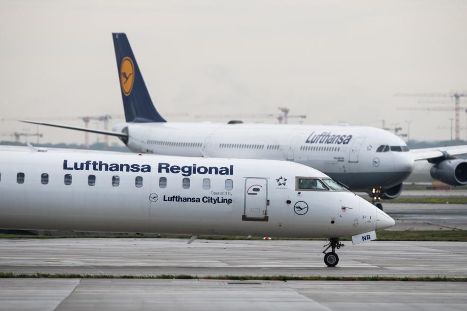 Frankfurt: Lufthansa bringt im Sommer die halbe Flotte wieder in die Luft