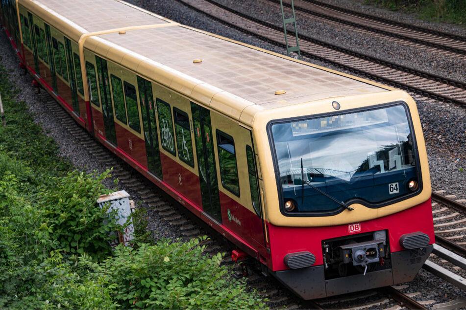 Berlin: Mann (44) stürzt bei Einfahrt von Zug aufs Gleis, Retter zögern keine Sekunde