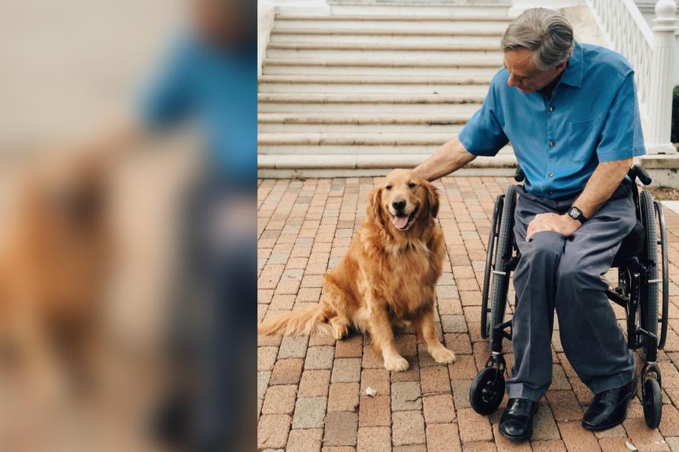 Texas Governor Greg Abbott refuses to sign dog cruelty prevention bill