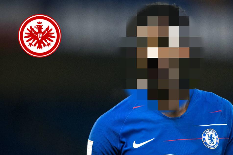 Neuer Torjäger für die Eintracht? Frankfurt heiß auf Stürmer von Champions-League-Halbfinalist