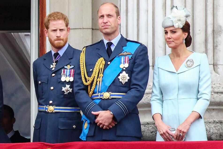 Auch wenn Prinz William (38, M.) und Prinz Harry (35) sich derzeit offenbar nicht viel zu sagen haben, wollen sie gemeinsam ihre Mutter ehren.