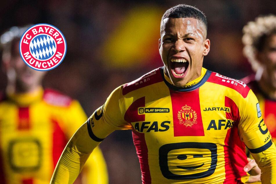 Robuster Belgien-Youngster zum FC Bayern? Nächster Alphonso Davies im Visier des FCB?