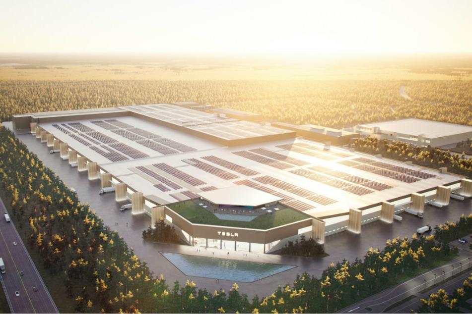 Hier zeigt Elon Musk die geplante Tesla-Fabrik bei Berlin
