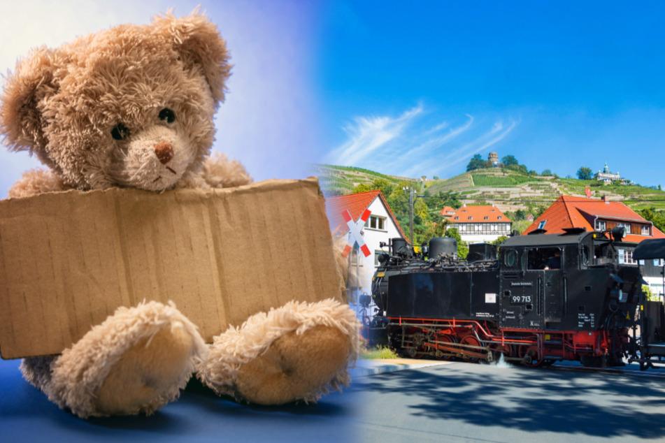 Teddy nicht vergessen, dann ist die Fahrt für Kinder umsonst.