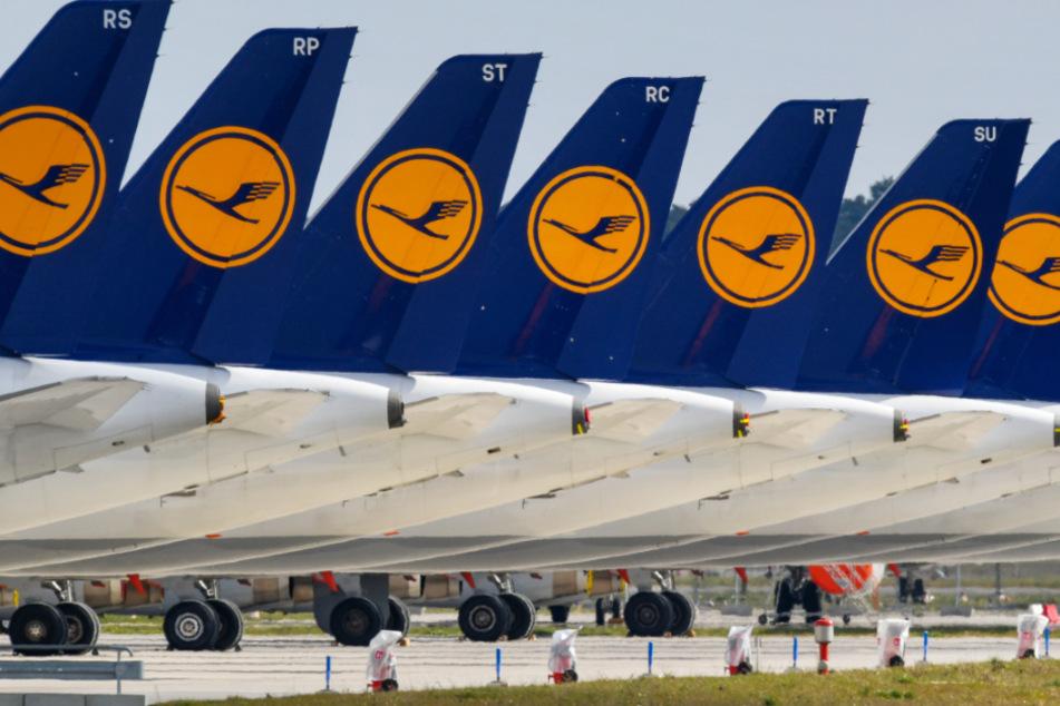 Wegen der Corona-Krise bleiben aktuell zahlreiche Lufthansa-Maschinen am Boden.