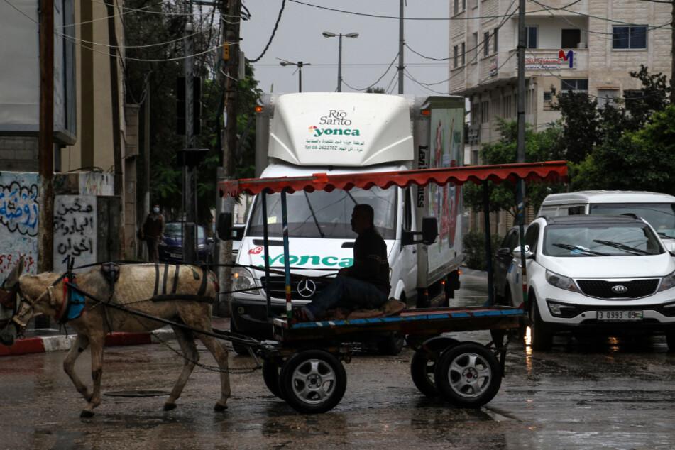 Gaza: Ein Palästinenser fährt bei Regen auf einem von einem Esel gezogenen Wagen im Straßenverkehr.