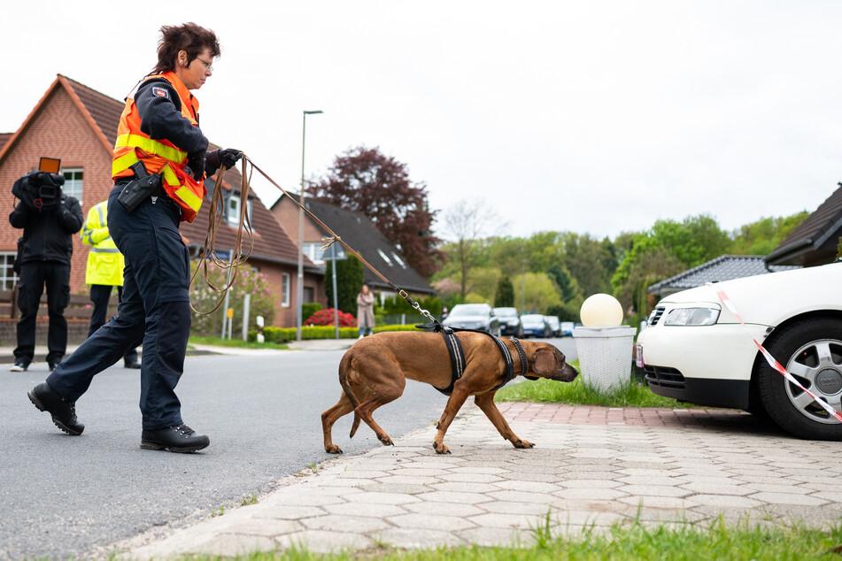 Nach Mord in Bispingen: Polizei findet Kinderleiche in Waldstück!
