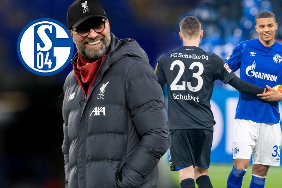 Klopp an Schalke-Youngster dran! Verliert Königsblau sein nächstes Talent?