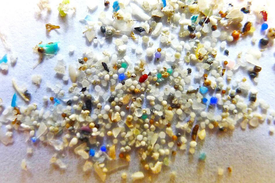 Mikroplastikkügelchen liegen auf einem Blatt Papier. Die kleinen Plastikteilchen mit einer Größe unter 5 Millimetern verschmutzen die Meere und werden noch immer in Kosmetika verarbeitet.