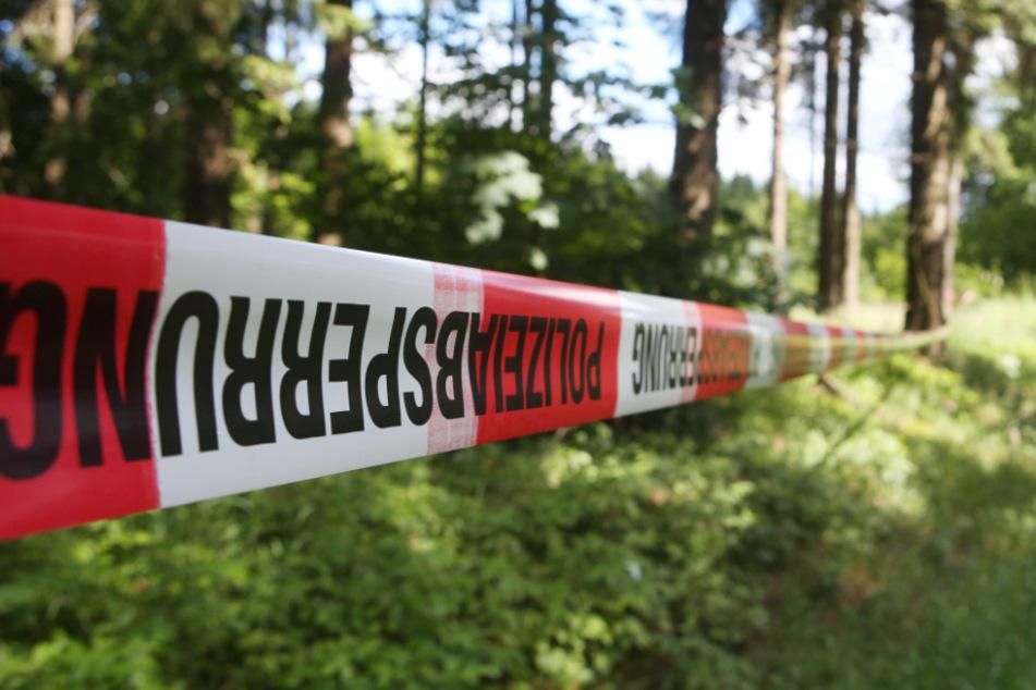 Waldarbeiter fanden Teile des Skeletts des Mädchens (Symbolfoto).