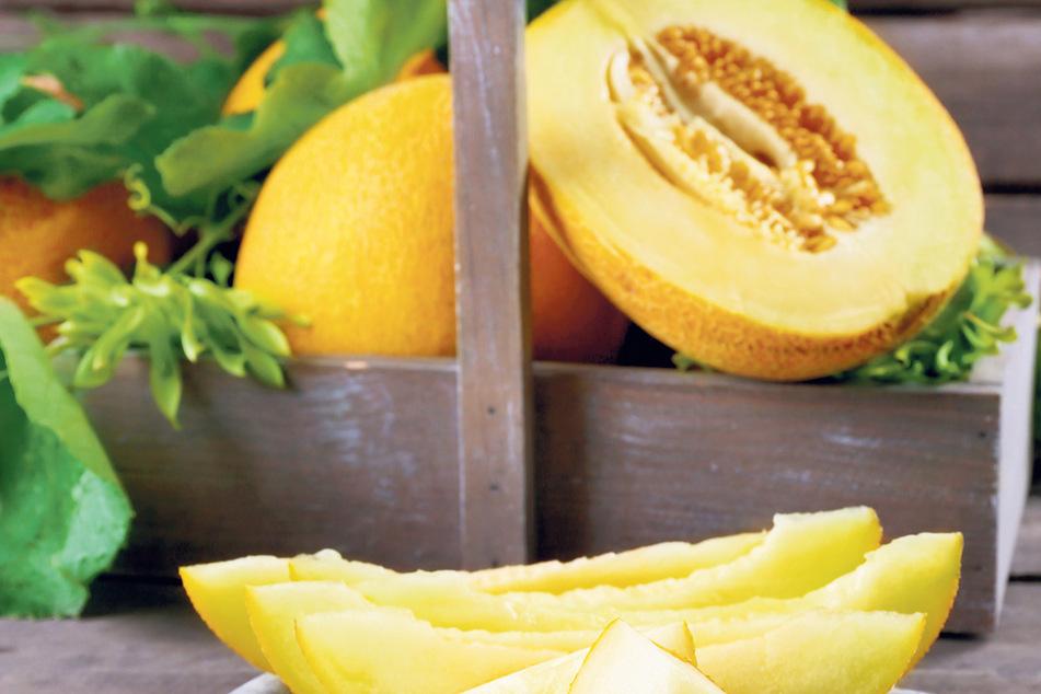 Honigmelone in Würfel schneiden, zur Not tut es auch Wassermelone.