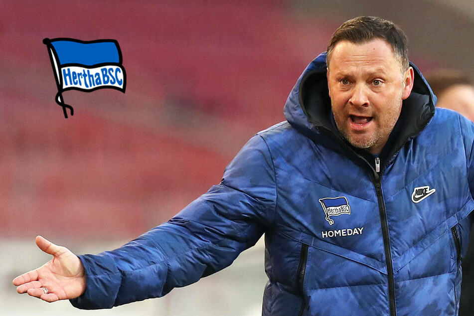 Übermut tut selten gut: Wollte Hertha BSC zu schnell den Sprung schaffen?
