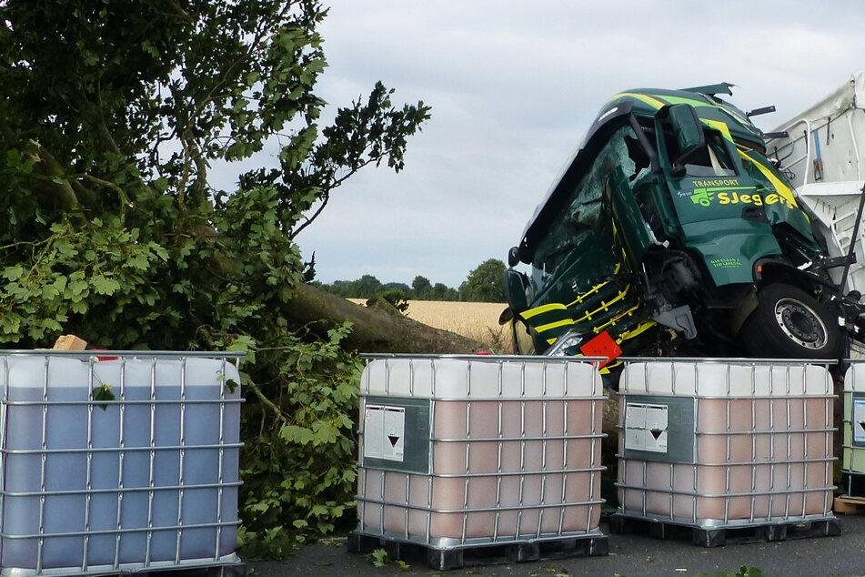 Reh kracht in Windschutzscheibe von Lkw: Fahrer schwer verletzt!