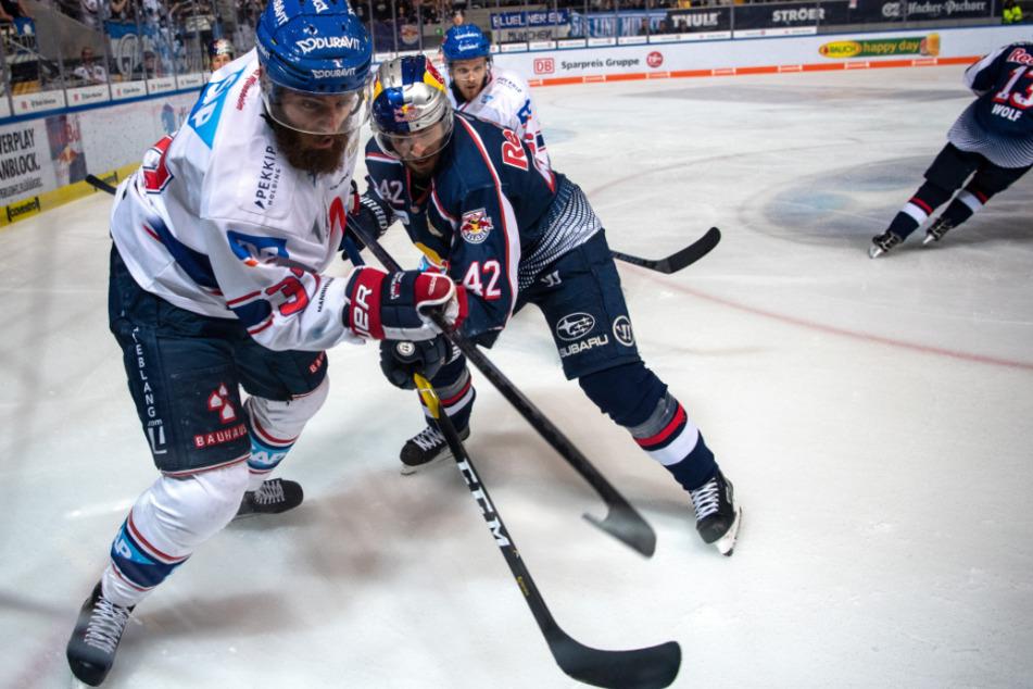 Ein Eishockey Spiel: EHC Red Bull München - Adler Mannheim.