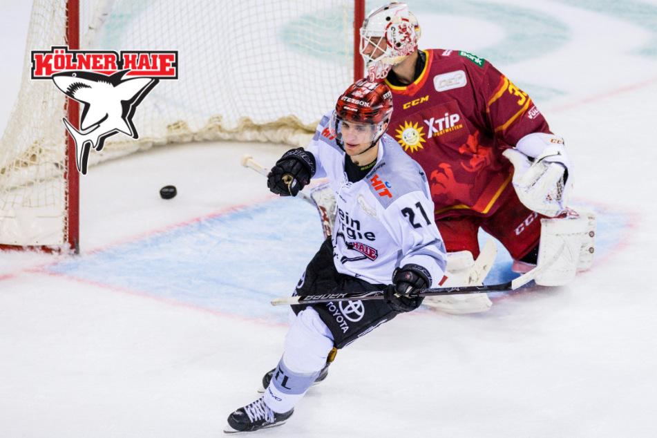 Kölner Haie starten mit Derby in die DEL-Saison