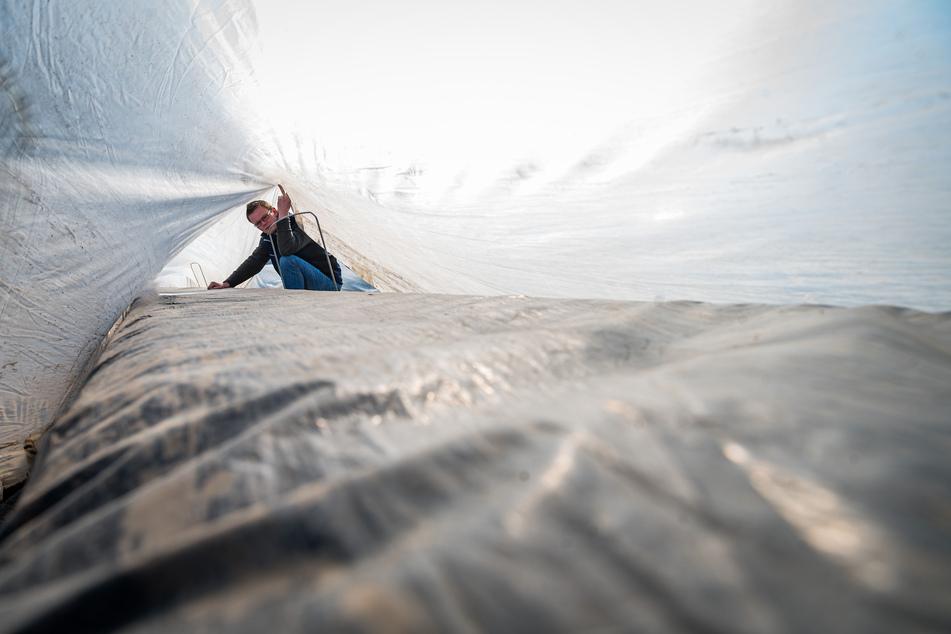 René Heidig (37) von der Agrar GbR Naundörfel beim Prüfen eines Tunnelzeltes.