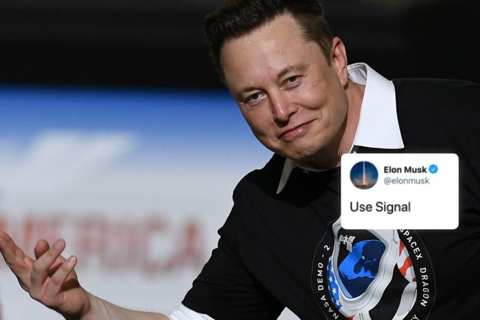 Elon Musk twittert zwei Worte: Darauf begehen tausende Menschen einen krassen Fehler!