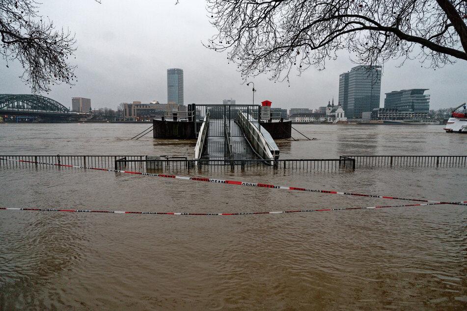 Der Rhein in Köln führt momentan Hochwasser, ist sehr kalt und strömt sehr schnell.