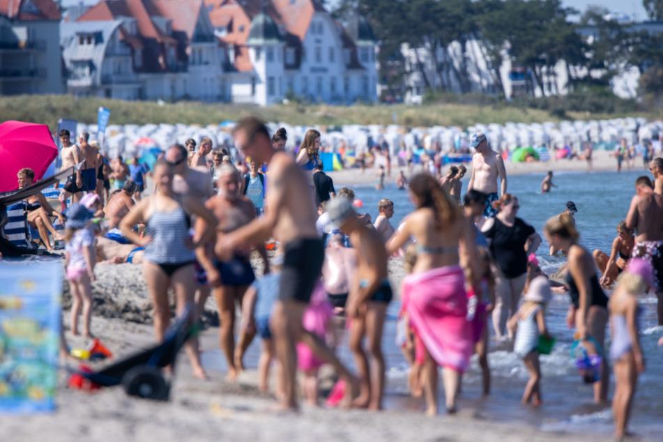 Ostsee-Urlaub in Gefahr? Große Blaualgen-Teppiche entdeckt