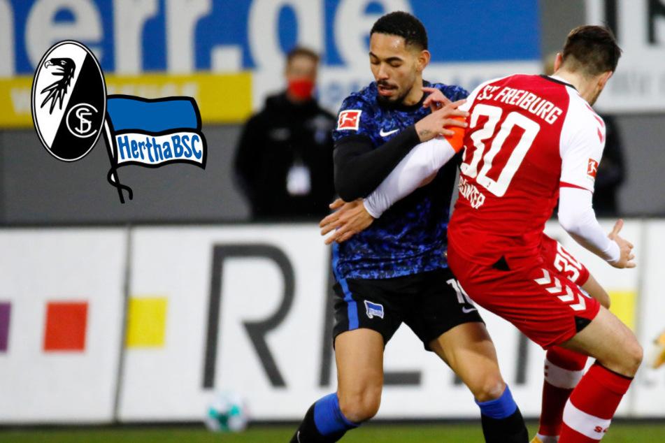 Hertha zurück im Abstiegskampf: Alte Dame verliert deutlich in Freiburg!