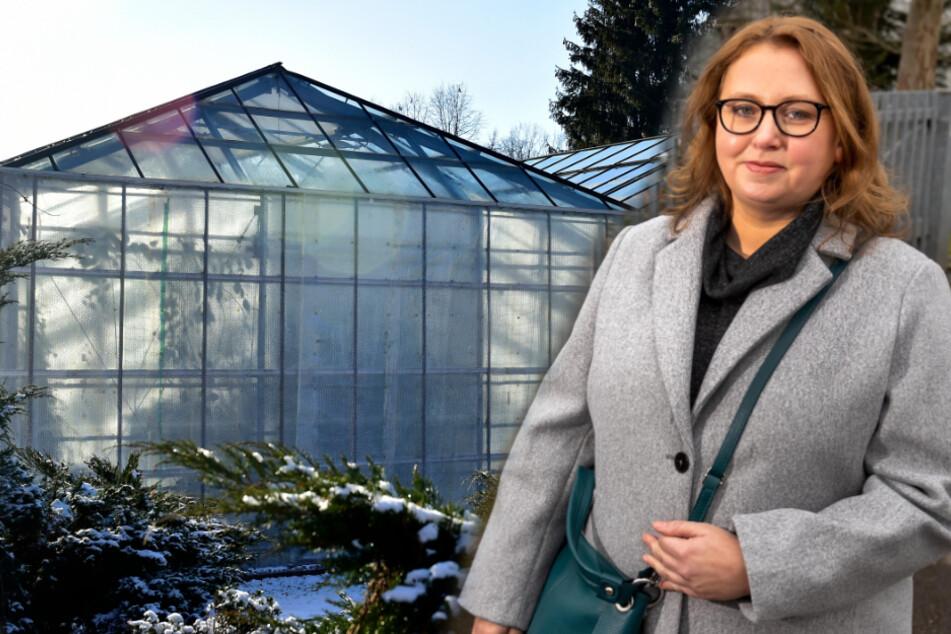 Chemnitz: Endlich! Stadt Chemnitz kümmert sich um den Botanischen Garten