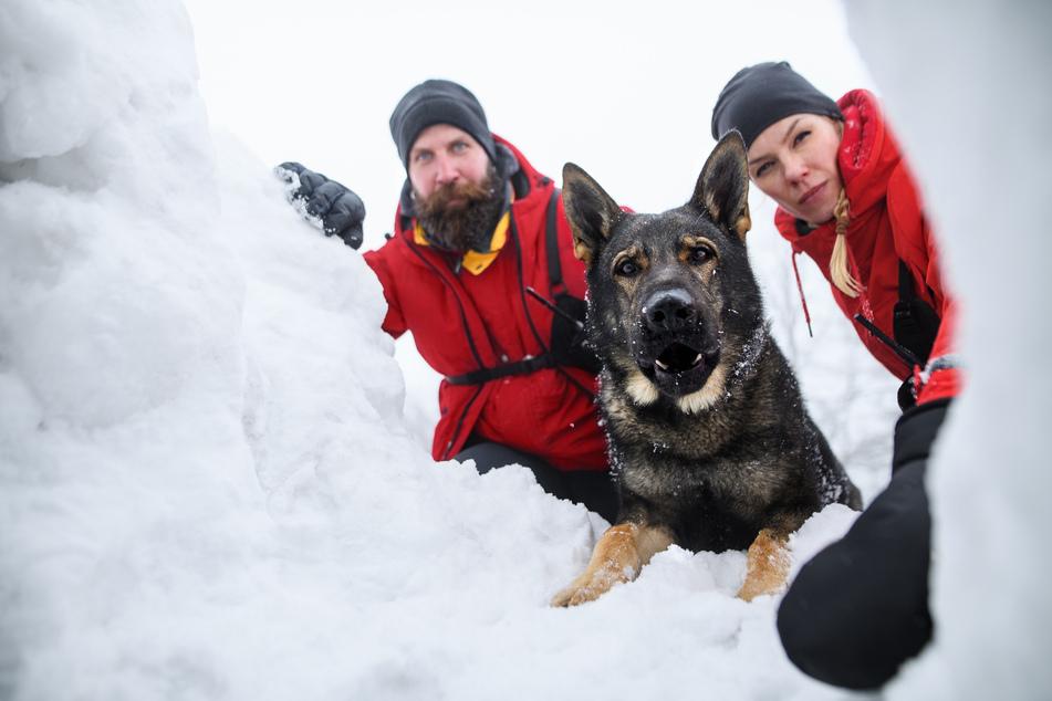 Drama in den Alpen: 65-Jähriger harrt fünf Stunden in Schneelawine aus
