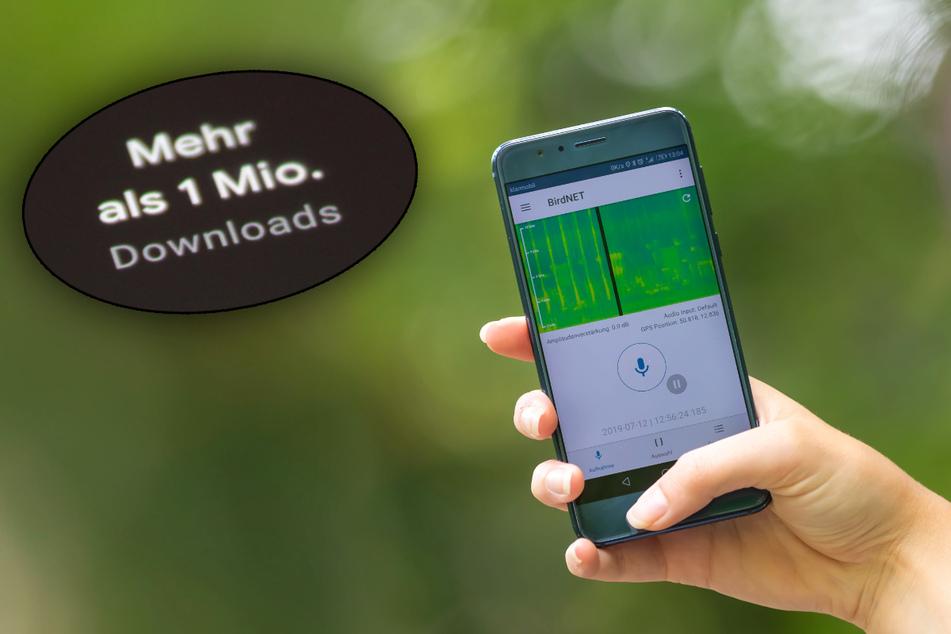 Über eine Million Downloads: Diese Chemnitzer App geht durch die Decke