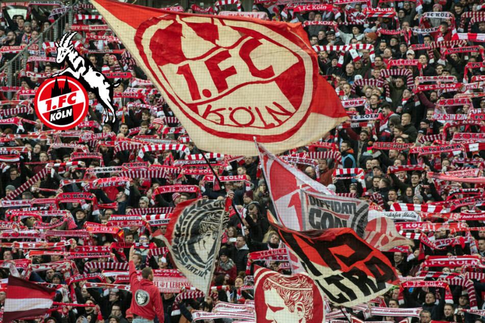 Bundesliga-Spielplan für den 1. FC Köln: Derby am dritten Spieltag!