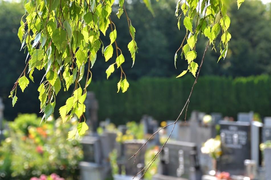 """Auf einem Friedhof wurde eine """"gut erhaltende"""" Leiche gefunden."""