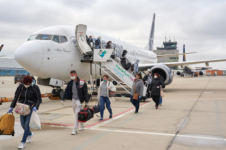 März 2020 herrschten wegen Corona Einreisebeschränkungen für Erntehelfer aus dem Ausland. Sie fehlten, konnten aber später im April eingeflogen werden.