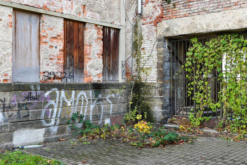 Vandalismus und die Natur setzen dem Gebäude immer weiter zu.
