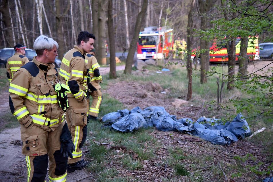 Weggeworfen wie Müll: Osterlämmer im Wald entsorgt