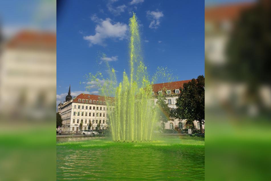 Immer wieder werden Dresdner Brunnen mit Farbpulver verunreinigt. So wie hier am Palaisplatz.