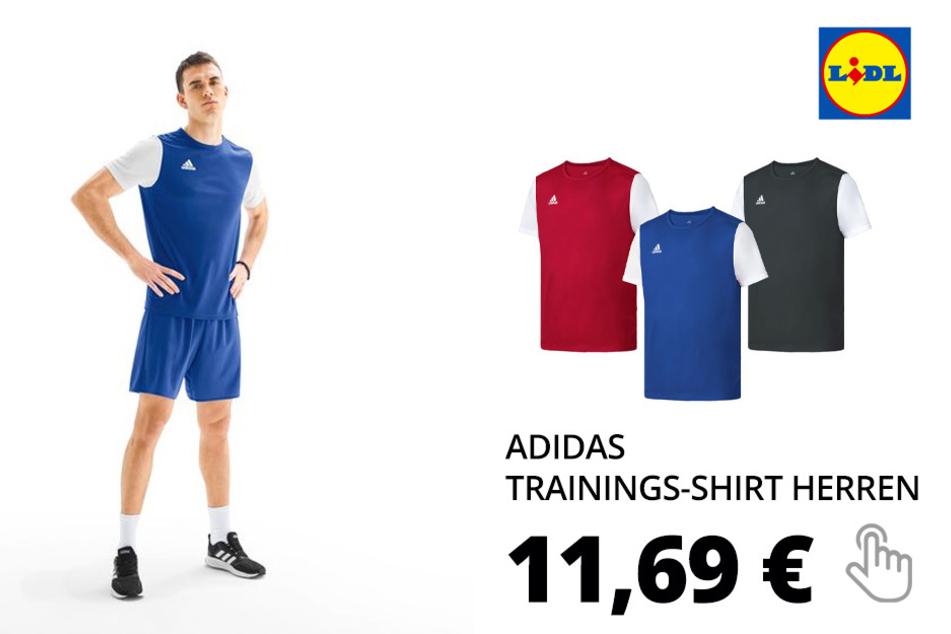 adidas Trainings T-Shirt Herren