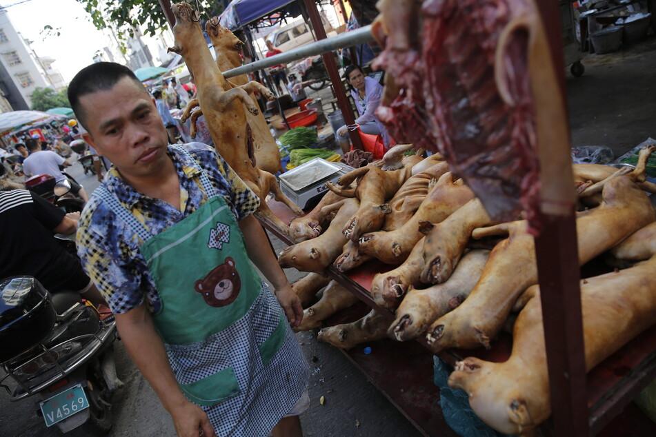 Bilder wie in einem schlechten Traum. In Yulin jährliche Tradition.