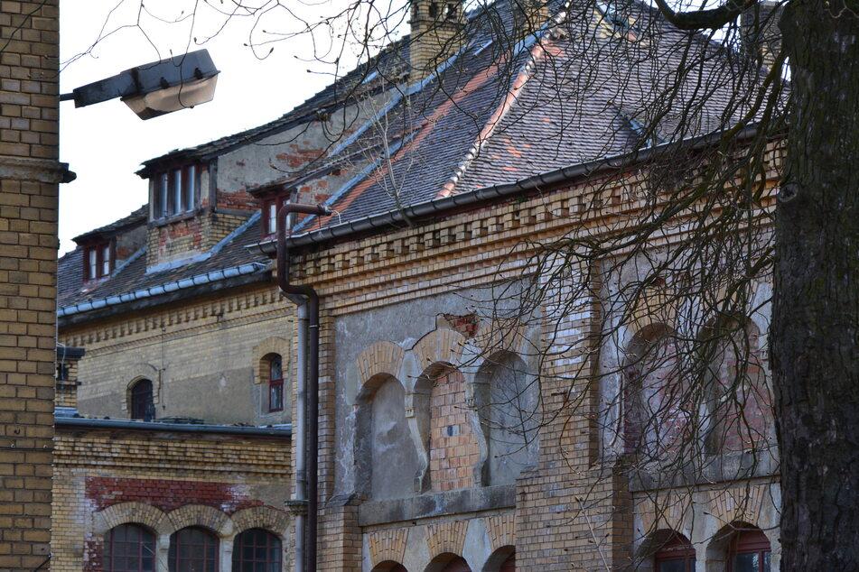 """600 Wohnungen, darunter 90 mietpreisgebunden, sollen in der """"Parkstadt Dösen"""" entstehen."""