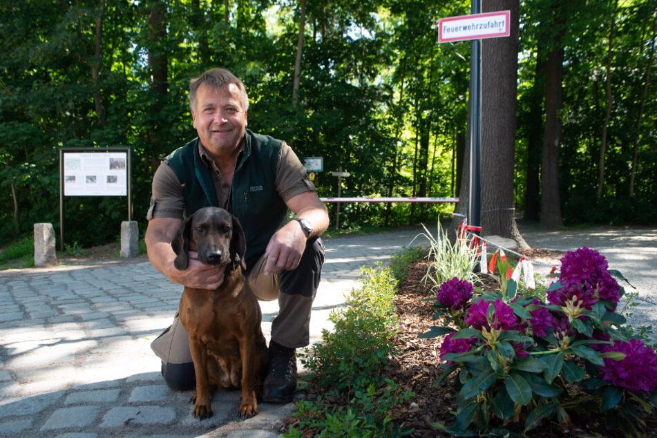 Revierförster Thomas Stelzig und seine Hündin Ayka sind im Wald zu Hause.